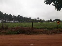 Imperdível terreno area