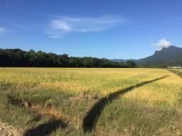 Terreno à venda em Urubuquara, Garuva cod:V05528