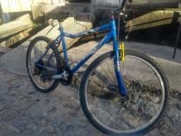 Prince bike DX300