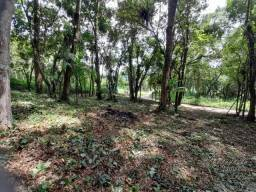 Terreno à venda, 6500 m² por R$ 60.000,00 - Faisqueirinha - Antonina/PR