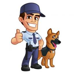 Serviços de segurança, Vigia, Vigilante e outros