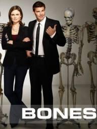 DVD 1° A 12° Temporada Serie Bones