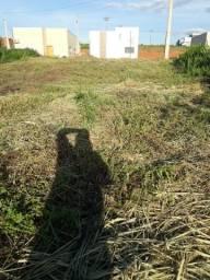 Terreno adolfo pin