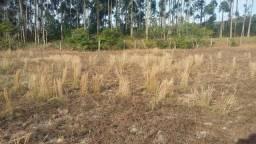 Barbada Terreno no Condomínio em Imbituba no bairro (Sambaqui)