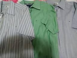 Camisas sociais manga curta Lacoste e Tommy - Roupas e calçados - Grajaú,  Rio de Janeiro 583374809   OLX 08ffb6d2b2