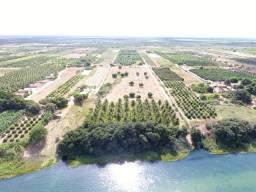 Fazenda 50 Hectares beira de rio Sâo Francisco - Venda