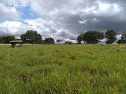 Fazenda em Livramento - MT