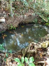 Vendo área de chácara,com bastante água!!!