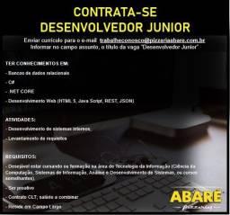 Desenvolvedor Junior
