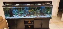 Aquario 550 litros + móvel