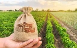 Título do anúncio: *Fazenda - lotes - Rural - Maquinas