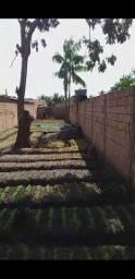Terreno jardin uniao