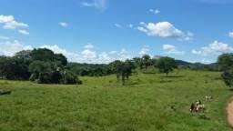Fazenda Plana c/ 2 Rios. 40 Alq. Israelândia-GO. $70Mil/Alq