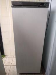Freezer 220 volts ENTREGO