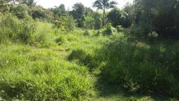 Terreno goiabal