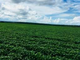 Fazenda | 3553 hectares | 90 km barra | Oportunidade única