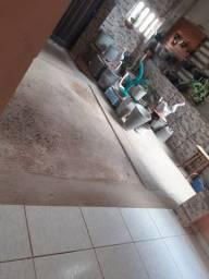 Vasos de cimento e garça
