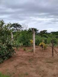 Chacara a venda 2,700 mt coleção de frutas mais de 200 especis dentro da cidade