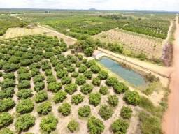 Fazenda 8 Hectares , Maniçoba - Venda