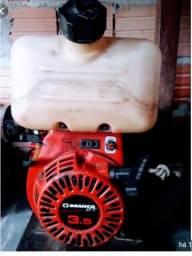 Motor estacionário