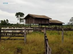 Fazenda em Porto Esperidião