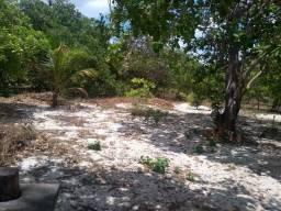 Sitio pequeno em Acaraú