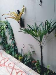 Linda Casa na Praia Itanhaém 50,00