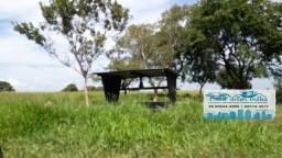 Fazenda com 355 hectares na Região do Capão Grande