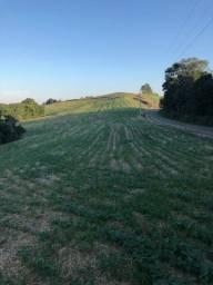Terreno Rural - 10 Alqueires