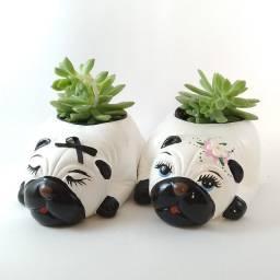 Vasinhos Formato Cachorro PUG para Suculentas e Cactos