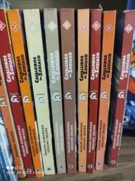 Cavaleiros do Zodíaco episódios G 1 ao 10