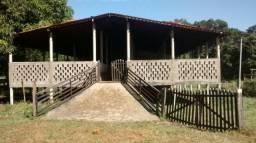 Fazenda 450 Hect toda documentada e estruturada em Itapecuru-Mirim/MA - (99) 9 8107 7996