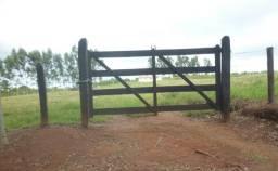 Sitio Município de Capetinga-MG