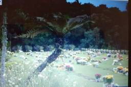 Jazigo cemitério Parque memorial Graciosa