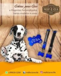 Coleira de identificação para Pets