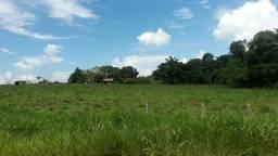 Fazenda Br 230 Humaitá/Apuí