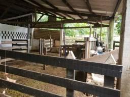 Vendo fazenda próximo ao Novo Gama Goiás, 122 Hectares com uma casa linda