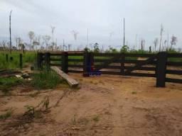 Fazenda à venda,por R$ 12.000.000 - Zona Rural - Machadinho D'Oeste/RO