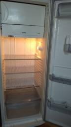 Vendo geladeira grande 110 v