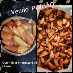 Vendo Pinhão