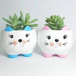 Vaso Formato Gatinho - para Suculentas e Cactos