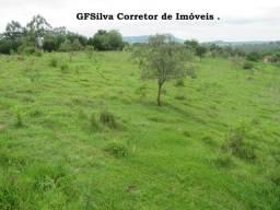 Terreno 20.000 m2 ótimo local para formar uma bela chácara Ref. 165 Silva Corretor