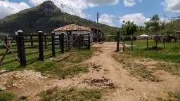 Fazenda em Tanquinho / Edna Dantas!!!