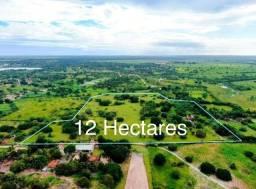 Vende - se Área com 12.5 hectares, Macaiba.