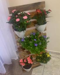 Jardim vertical suspenso