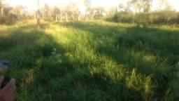 Barrão de Melgaço-MT=Vend.6.mil P/Hect=Fazenda com 5.000 hectares=Pronta Pecuária