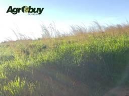Fazenda Com 400 Alqueires à 20 km da Cidade São Valério To.