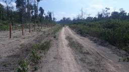 Fazenda 246,77 hectares