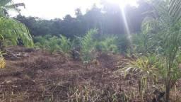 Vende_se ou toca terreno rural em Serra do Navio