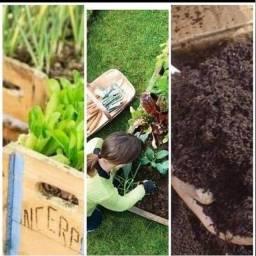 Compostagem totalmente orgânica p vc criar ou cultivar suas plantas